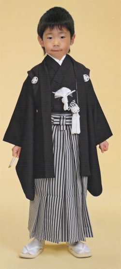 画像1: 七五三男の子5歳紋付着物袴11点セット合繊(家紋入れ込み) <七五三の着付けに必要な最低限の品物が揃います>