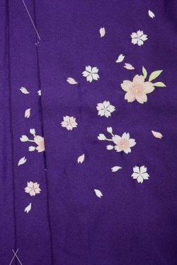 画像2: 七五三7歳用刺繍入り女児袴