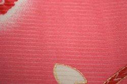 画像2: 女の子 夏のお宮参り着物 絽 (赤)