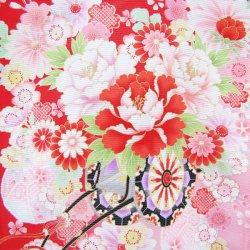 画像3: 女の子 夏のお宮参り着物 絽 (赤)